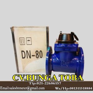 AMICO 3 Inch Water meter