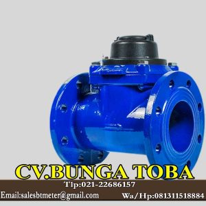 AMICO Water meter 5 inch