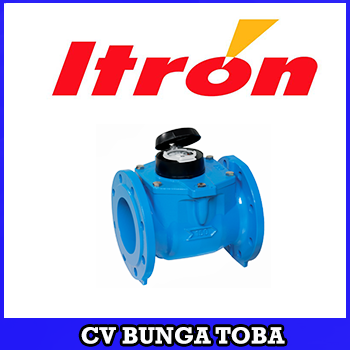 ITRON COLD WATER METER